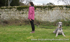 DogSchool (1 of 1)-73.jpg