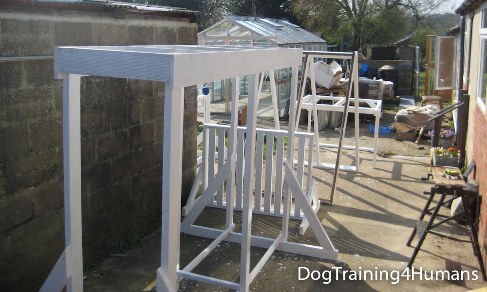 DogSchool (1 of 1)-361.jpg