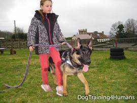 DogSchool (1 of 1)-159.jpg