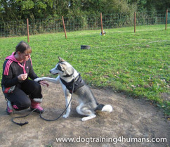 DogSchool (1 of 1)-125.jpg