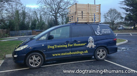 DogSchool (1 of 1)-74.jpg