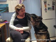 DogSchool (1 of 1)-150.jpg
