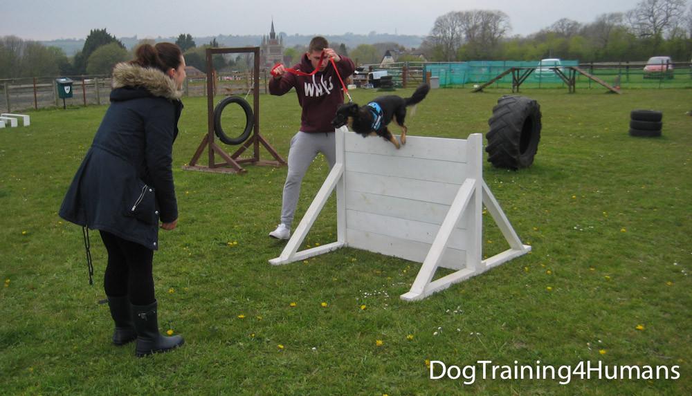 DogSchool (1 of 1)-434.jpg