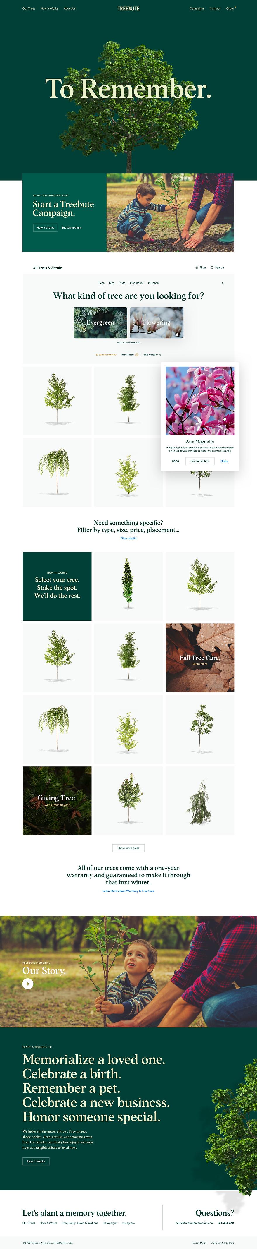 Treebute-Index.jpg