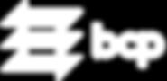 BlockChainPower-Logo-Short-White.png