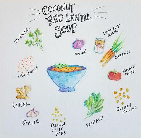 Coconut red lentil soup illustration-2.j
