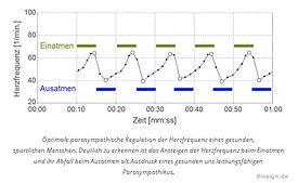 gute HRV  | Beratungen mit Autogenem Training, Hypnose + NLP | Chur