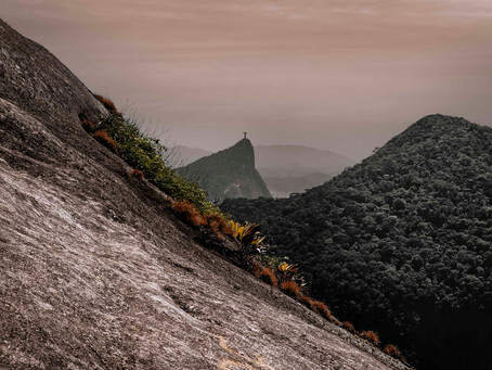 Tijuca National Forest