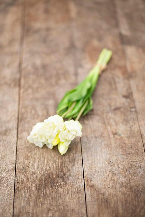 Weiße Tulpen im Bündel (Kunstblumen)