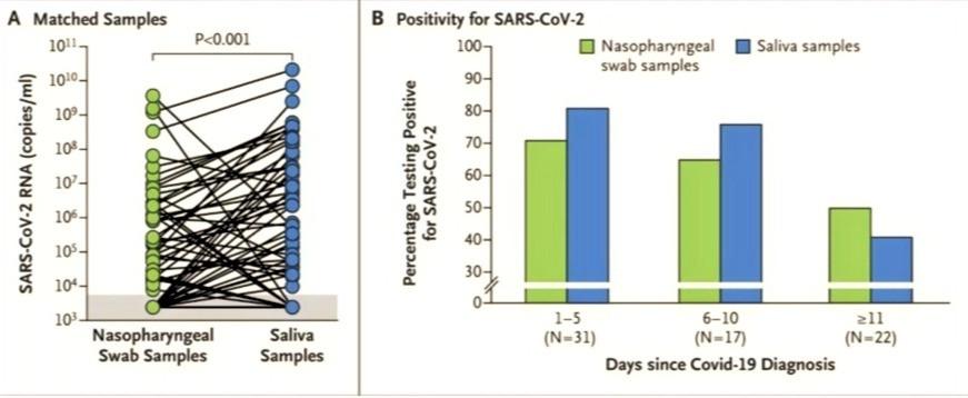 Ensayo de comparación saliva versus hisopado nasofaríngeo