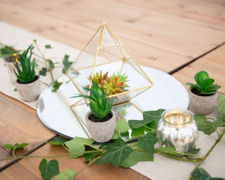 Mirror, Brass Terrarium with Succulents