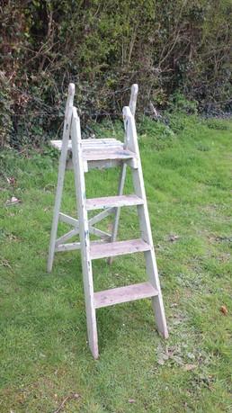 Decorators Step Ladder