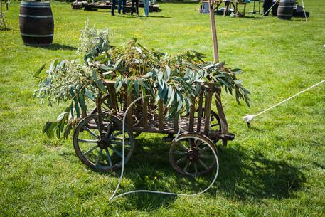 Vintage Dog Cart