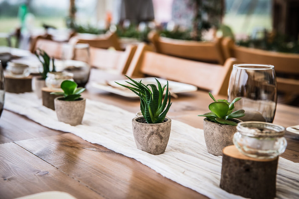 Artificial Potted Succulents and White Muslin Runner