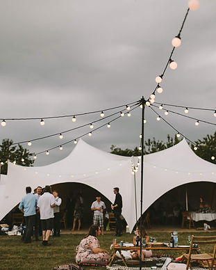 Festoon Star Canopy-TINY.jpeg