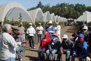Rosa-Dolores-instructing-farmworkers.jpg