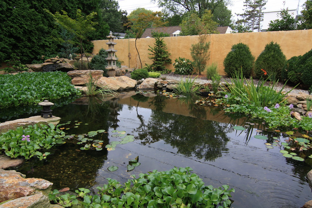 Water Features 67.jpg