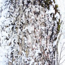8-quiqui-lamothe-creatrice-designer-de-robes-de-mariees-de-provence-nature-bio-ecologiques-ecoconçue