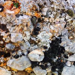 22-quiqui-lamothe-creatrice-designer-de-robes-de-mariees-de-provence-bohème-chic-nature-bio-ecologiq