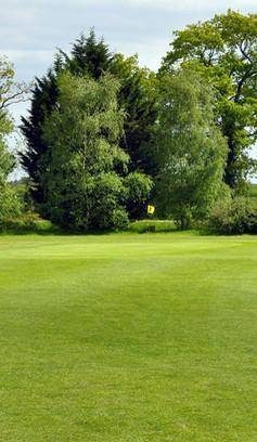 golf de caden-t3.jpg