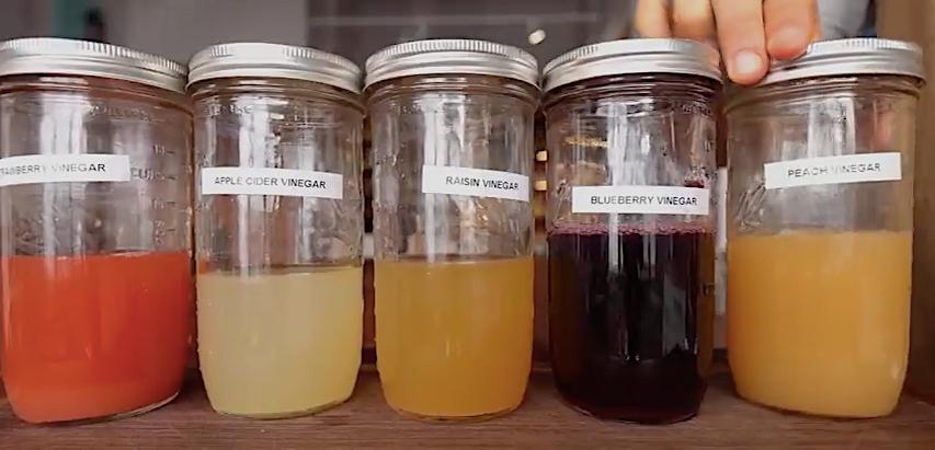 Making vinegar from scratch