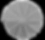 Linea Scale Torino - chiocciola