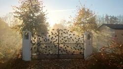 Decorative ironwork - gate