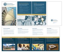 USIP Brochure
