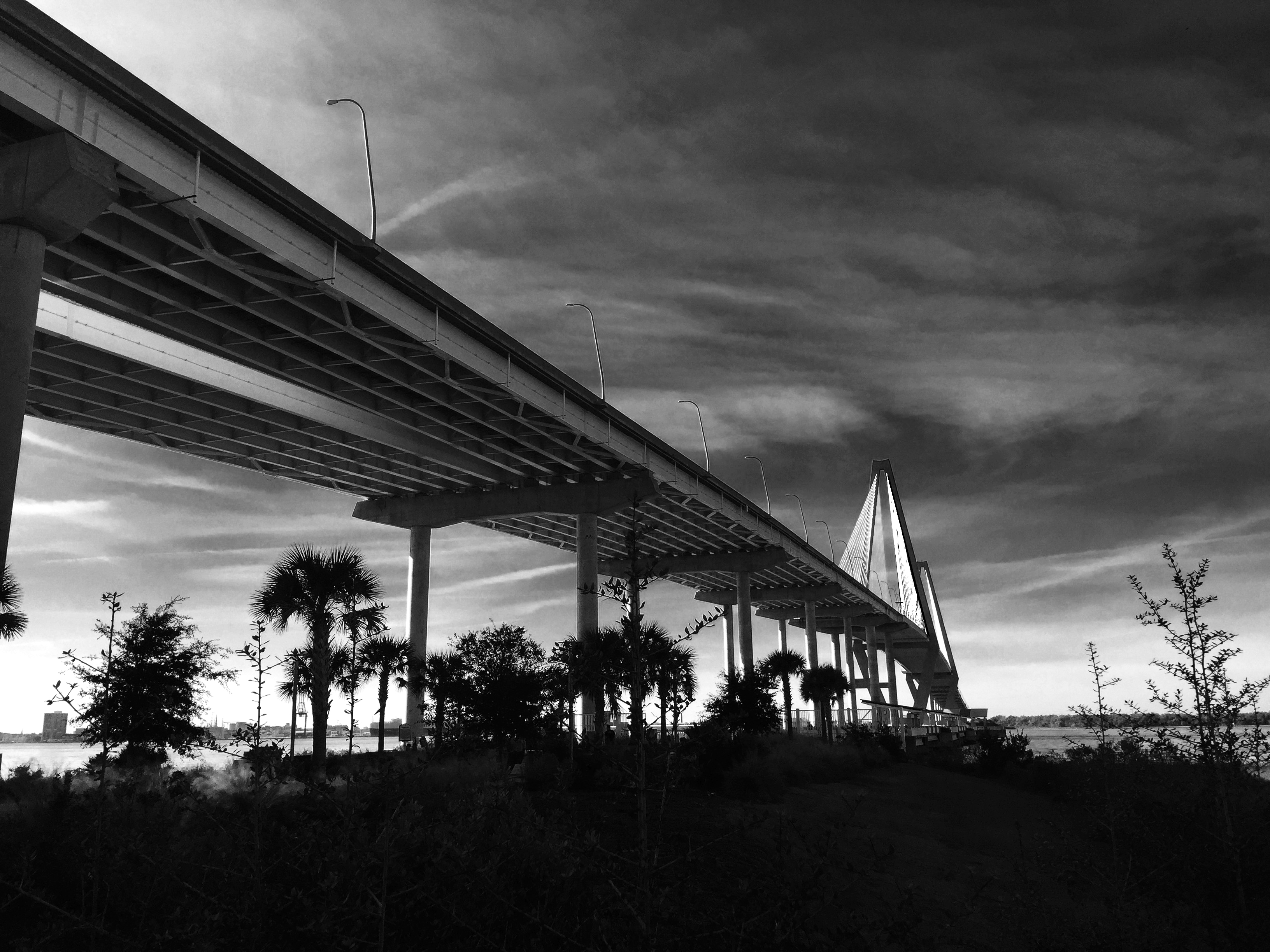 Under Ravenel Bridge