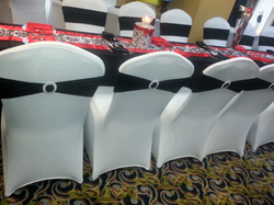 Birthday Party..Back View of Chair Covers