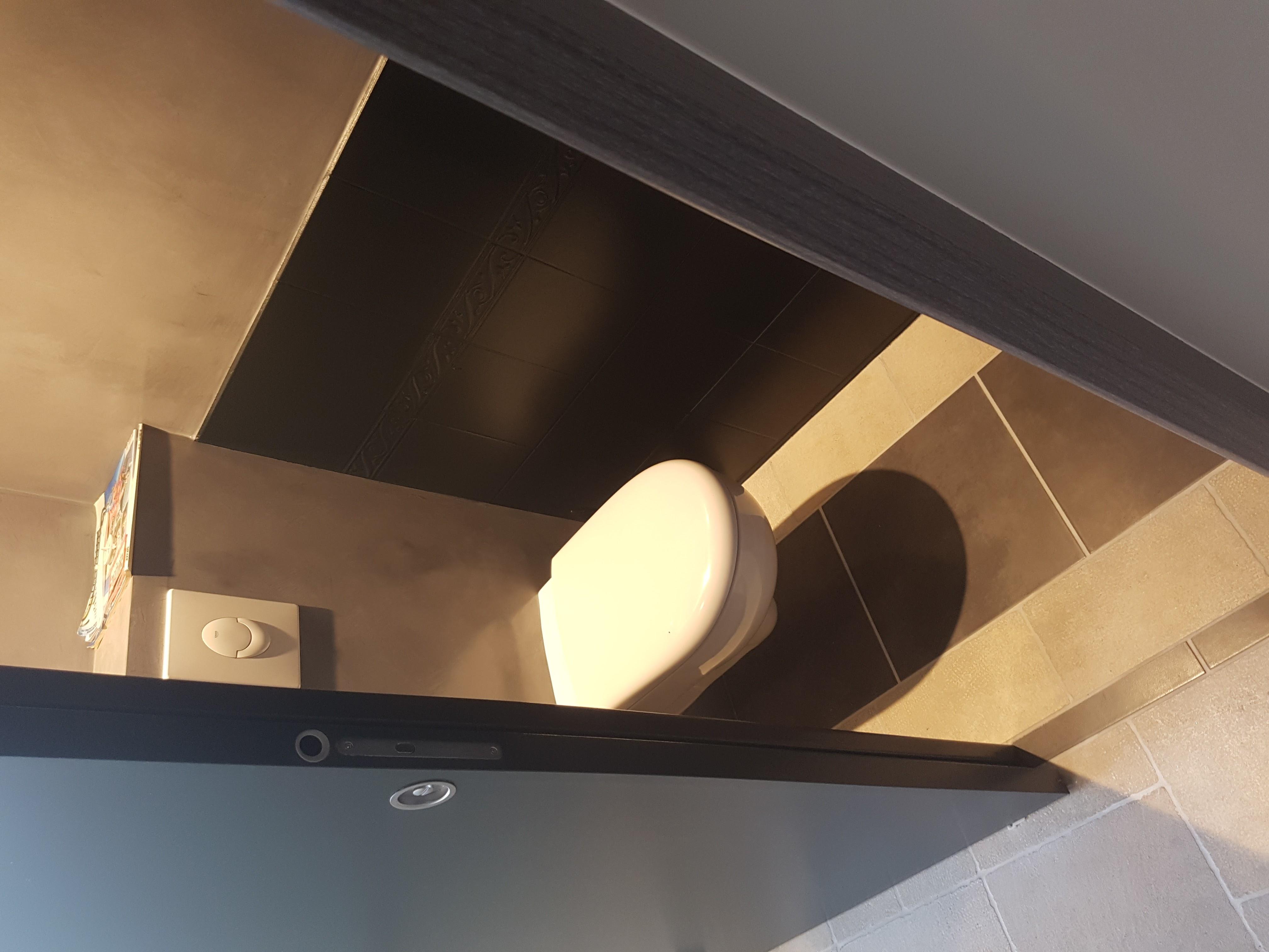 renovation wc beton cire 79