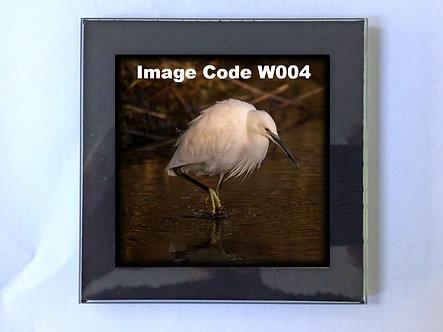 British Wildlife Deluxe Coaster (Glass)
