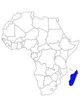 CARTE MADAGASCAR.jpg
