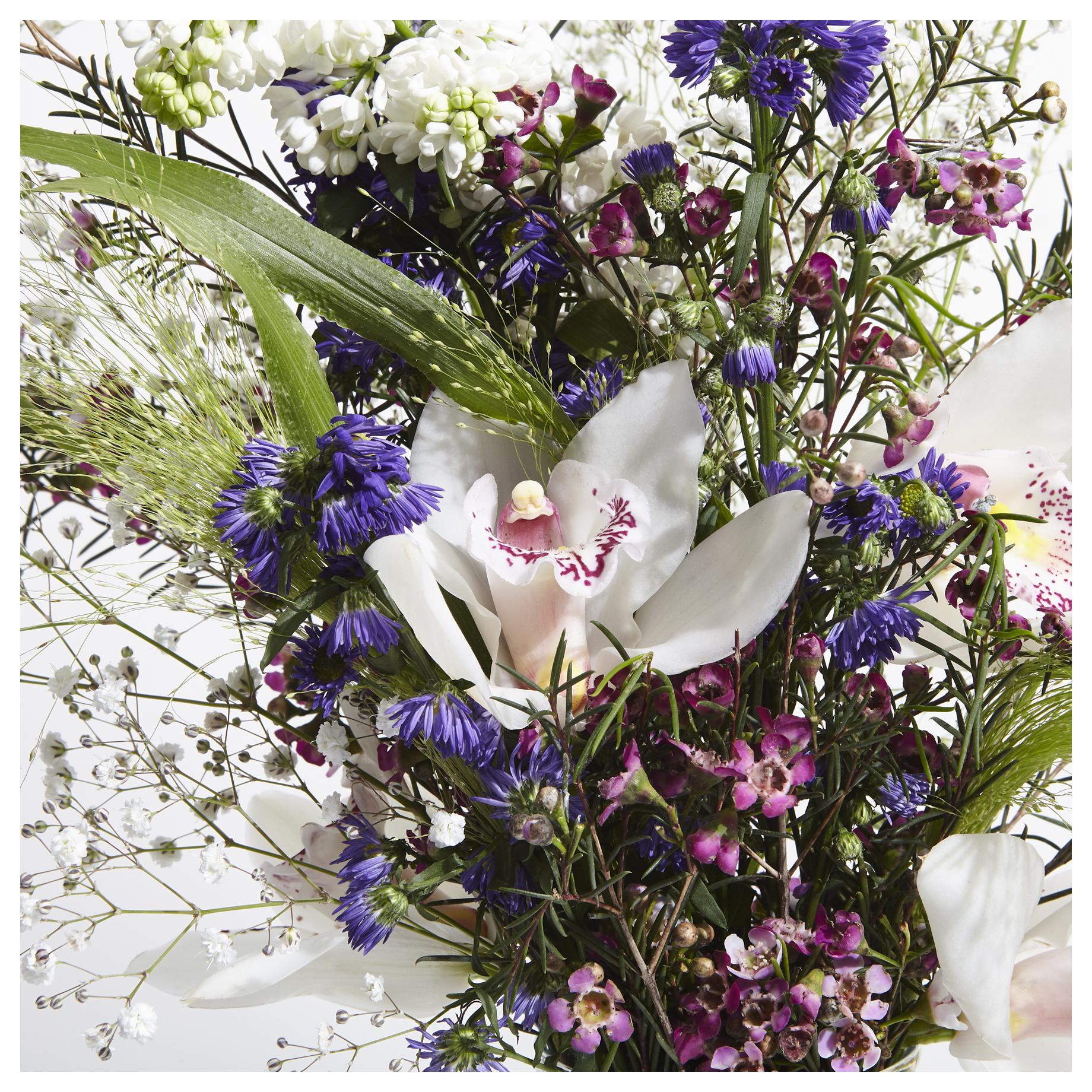Phyto_Fleurs_2_WEB