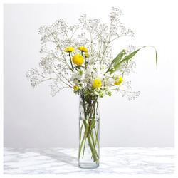 Phyto_Fleurs_WEB
