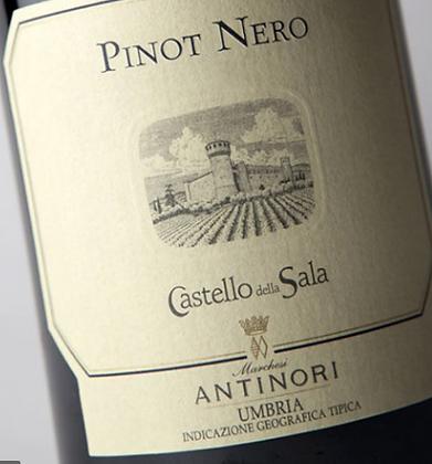 Pinot Nero della Sala 2015 Igt  Castello della Sala