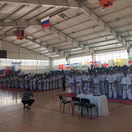 Ульяновск 2018. Парад участников