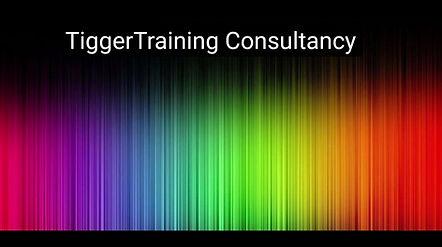 TiggerTraining, My Consultancy programme