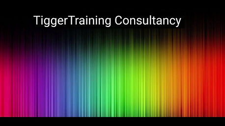 TiggerTraining, My Consultancy programme