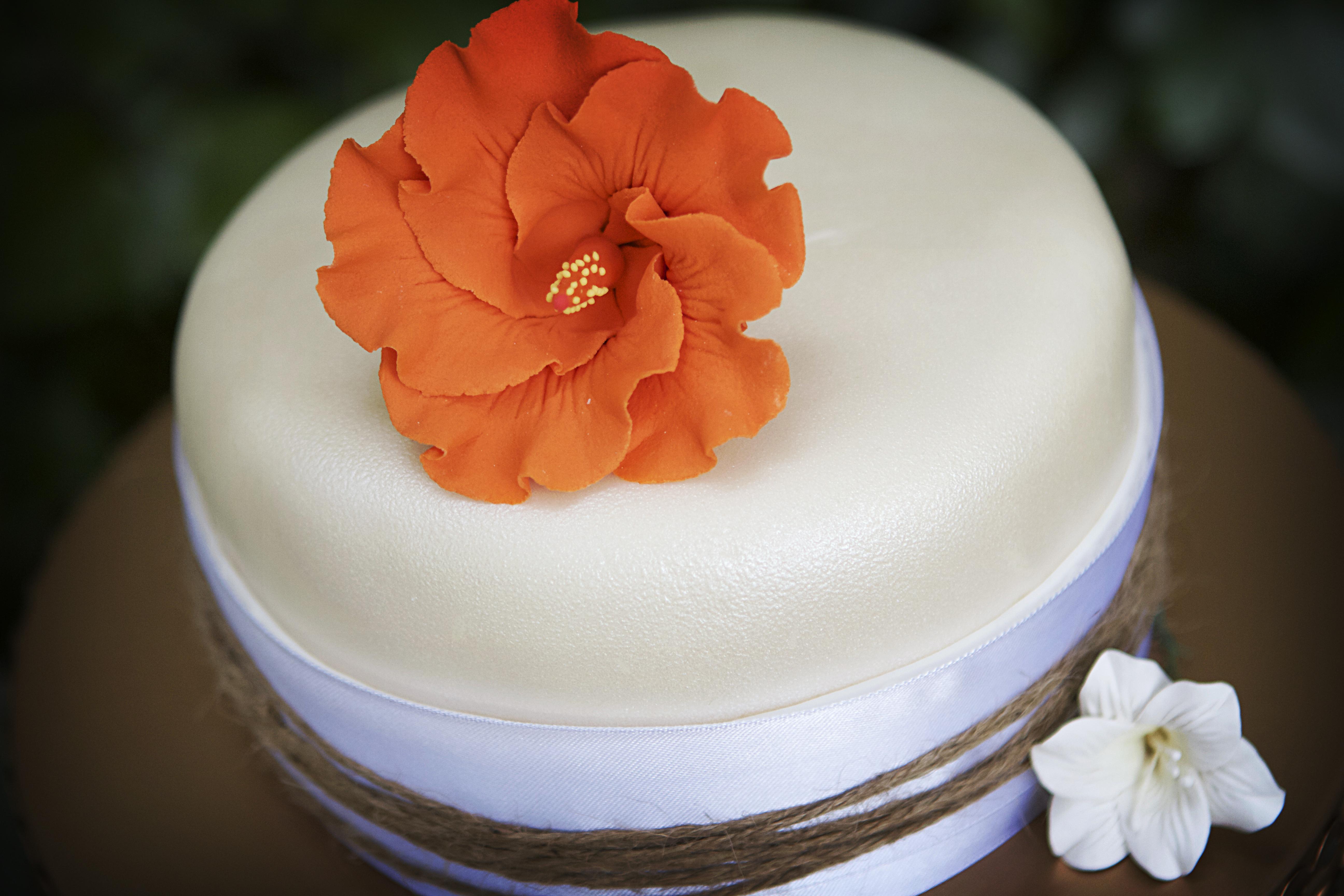 New Cutting Cake