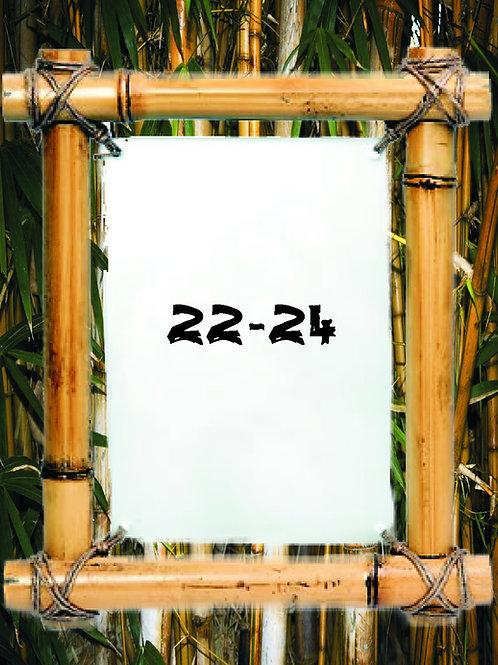 2020 Fl Skimboarding Pro/Am Entry 22-24