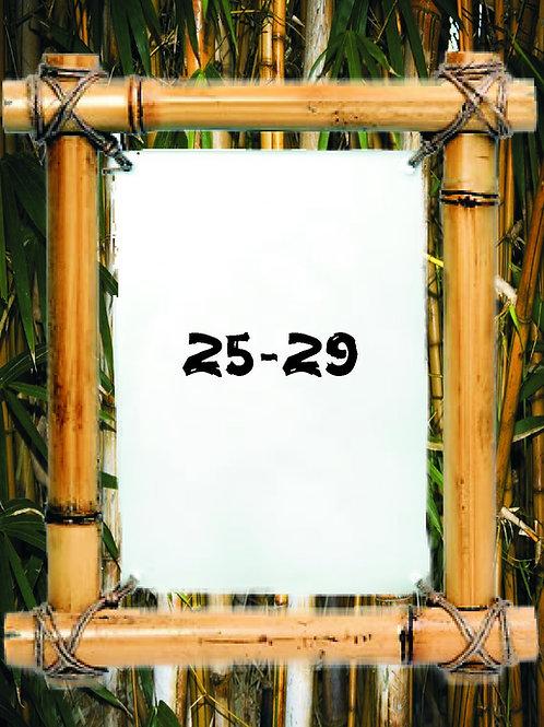 2020 Fl Skimboarding Pro/Am Entry 25-29