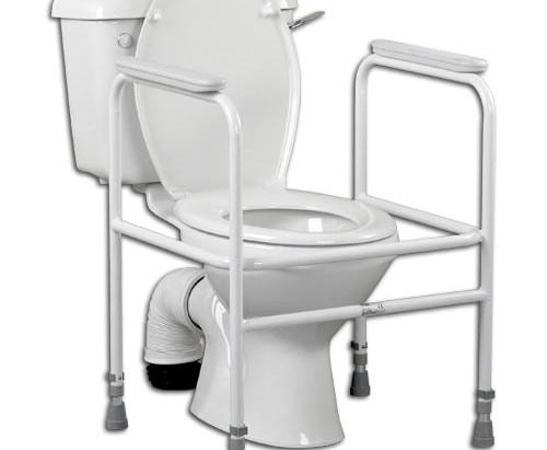 The Toilet Frame