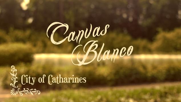 CANVAS BLANCO