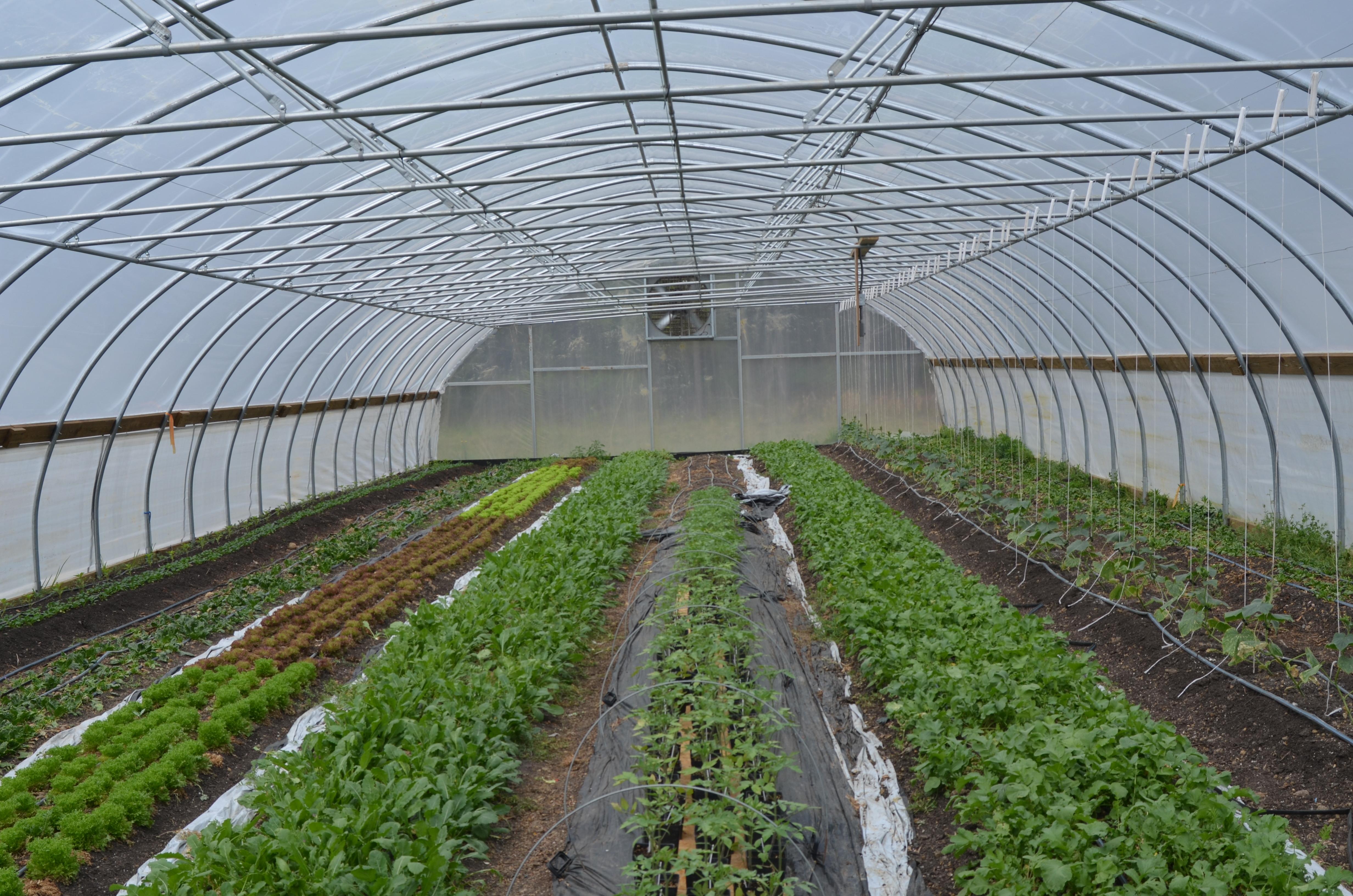 Broadfork Farm