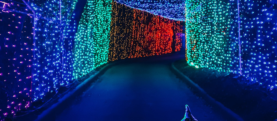 Dallas 2020 Holiday Guide: The Ultimate List of Things to do in DFW this Christmas Season