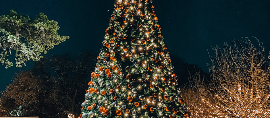 The Best Christmas Trees in Dallas Fort Worth in 2020