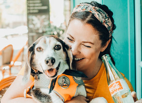 How to have the best weekend in dallas with your pups