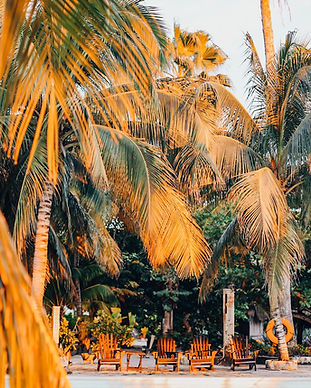 Where_to_stay_in_cozumel-4-7.jpg
