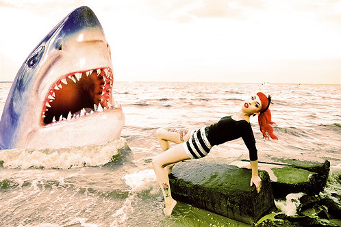 Raquel Reed Shark Lost At Sea Photography Art Print